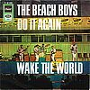 Beach Boys Do it again /wake the world