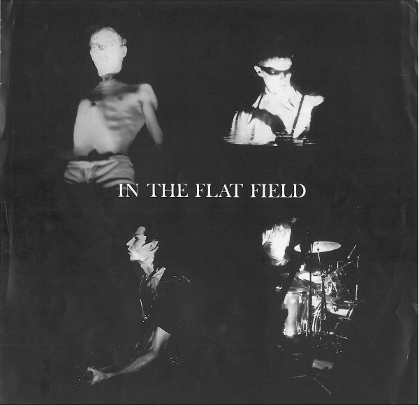 LP, Bauhaus, In The Flat Field 1980